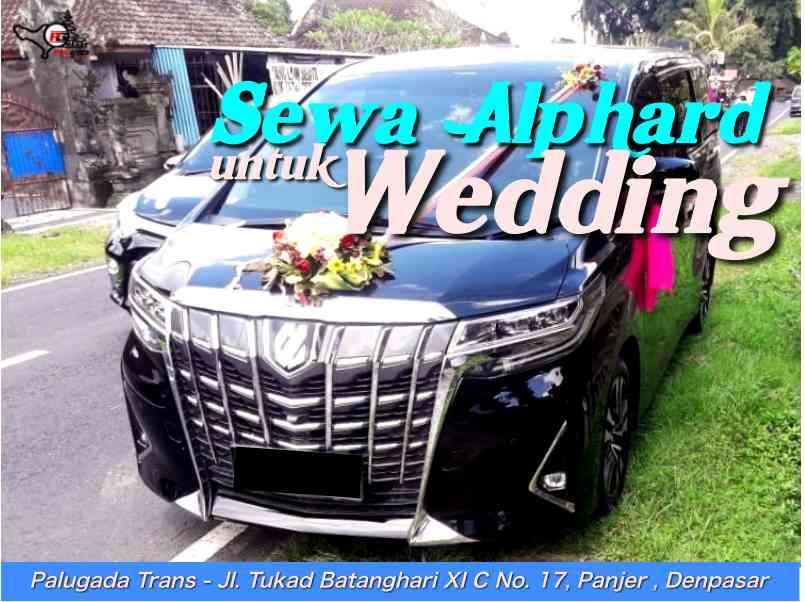 Sewa Alphard untuk Wedding di Bali, Dijamin Berkesan!